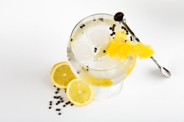 Gin and tonic with lemon slices